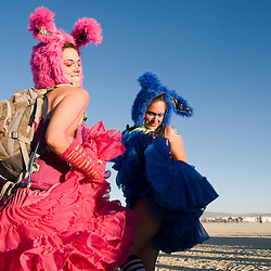 Best of Burning Man (2010)