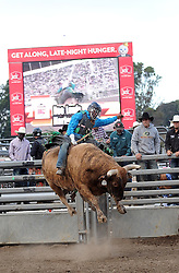 Harlem Shuffle takes rider Dee Lewis to new heights in the first round of Wednesday's 2013 PBR Touring Pro Division event at the Salinas Sports Complex.