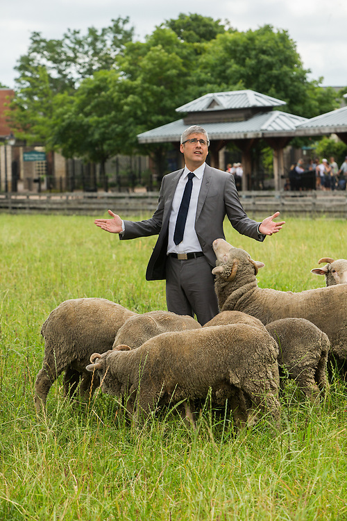 Mo Rocca with sheep at Greenfield Village while filming CBS's The Henry Ford's Innovation Nation