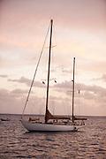 Lone Fox at anchor at sunset