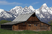 Old barns sit along Mormon Row in Grand Teton National Park, Wyoming, USA