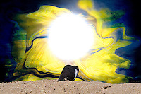 blue mussel shell on sea shore with a big hole of light in the center of the sky surrounded by floating yellow color with shades