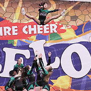 1026_Fame Silverstars - Senior Coed Level 3