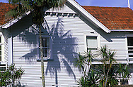Victorian house in a tropical setting, hence the palm tree shadow.  Auckland, New Zealand.
