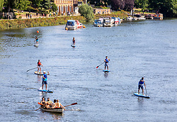 © Licensed to London News Pictures. 23/06/2020. London, UK. Paddle borders and rowing boats on the Thames at Richmond in South West London as forecasters predict a hot week ahead with temperatures expected to reach over 30c. Prime Minister, Boris Johnson announces that tourism and hospitality including pubs, restaurants and campsites can now reopen from the 4th of July as well as reducing the 2 metre rule to 1 metre.  Photo credit: Alex Lentati/LNP <br /> <br /> *Permission Given*