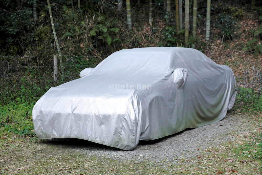 car parked under cover at edge of a forest