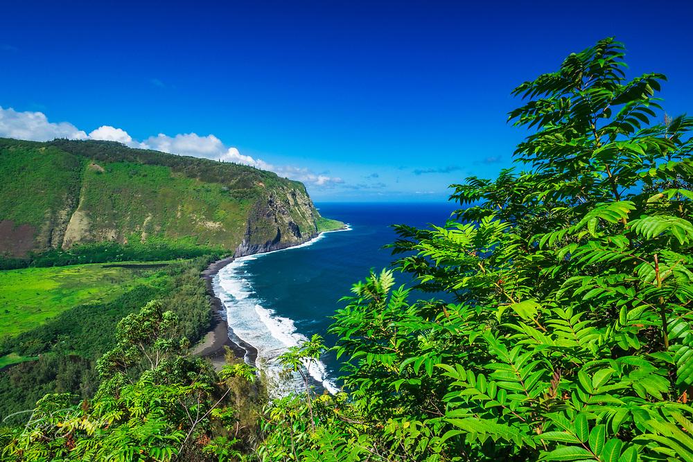 Waipio Valley, Hamakua Coast, The Big Island, Hawaii USA