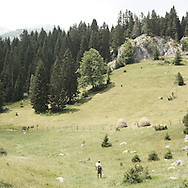 mountain in Durmitor park.There are several arguments about the derivation of the name  &quot;Montenegro&quot;, one of these relates to dark and deep forests  that once covered the Dinaric Alps, as it was possible to see them from the sea. <br /> Mostly mountainous with 672180 habitants on an area of 13812 Km&sup2;, with a population density of  48 habitants/Km&sup2;. <br /> It borders with Bosnia, Serbia, Croatia, Kosovo and Albania but  Montenegro has always been alien to the bloody political events that characterized Eastern Europe in recent decades. <br /> From 3 June 2006, breaking away from Serbia, Montenegro became an independent state. <br /> In the balance between economy devoted to sheep farming and a shy tourist, mostly coming from Bosnia and Herzegovina, Montenegro looks to Europe with a largely unspoiled natural beauty. <br /> Several cities in Montenegro, as well as the park Durmitor, considered World Heritage by UNESCO but not yet officially because Montenegro has yet to ratify the World Heritage Convention of UNESCO.