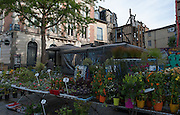 Rennes, FRANCE. General Views GV's. Rennes weekly regional market. Brittany,<br /> Vegetable's, Fruit, Flowers, Fish, Game, Meat, Cheese, local wine and cider, sold from stalls in the open and covered market  <br /> <br /> 08:31:54  Saturday  26/04/2014 <br /> <br />  [Mandatory Credit: Peter Spurrier/Intersport<br /> Images]