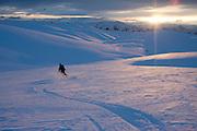 skier - steve tallott