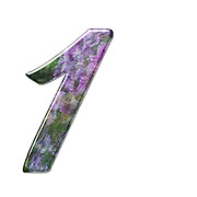 The number One Part of a set of letters, Numbers and symbols of 3D Alphabet made with a floral image on white background