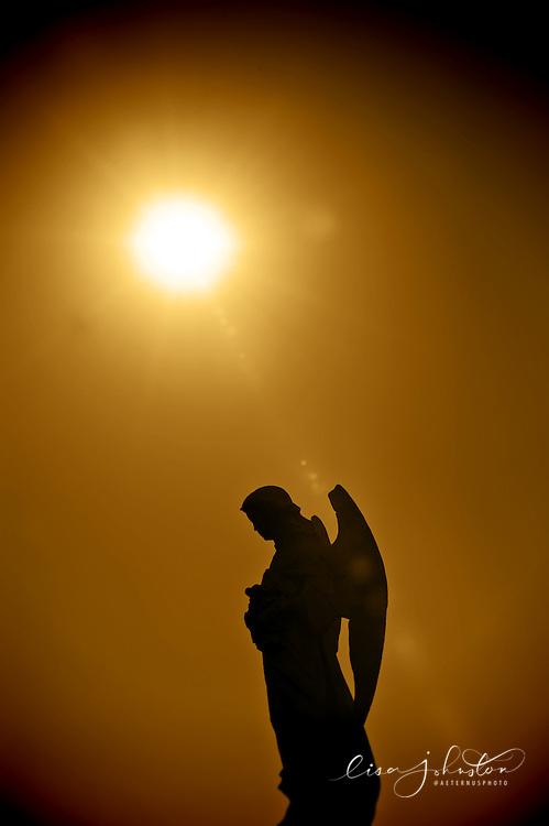 Lisa Johnston | lisa@aeternus.com | Tiwtter: @aeternusphoto Statue of an angel in Calvary Cemetery.