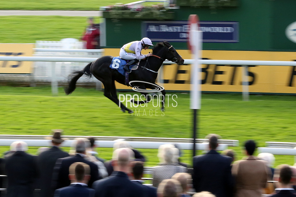 MOSS GILL (6) ridden by P J McDonald and trained by James Bethell winning The Parsonage Hotel and Cloisters Spa Handicap Stakes over 5f (£20,000)   during the October Finale Meeting at York Racecourse, York, United Kingdom on 11 October 2019.