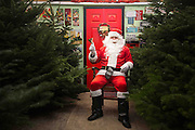 A comical feature showing the diverse and wide variety of Santa Clause's one can find in and around London. Father Christmas seems to have a wide range of appearances and different types of grottos from the elaborate Hamley's Toy Store to a garden shed in a Chobham garden centre. <br /> Pictured - Santa Clause and his grotto at Sutton Green Garden Centre.<br /> Credit: Rick Findler / Story Picture Agency