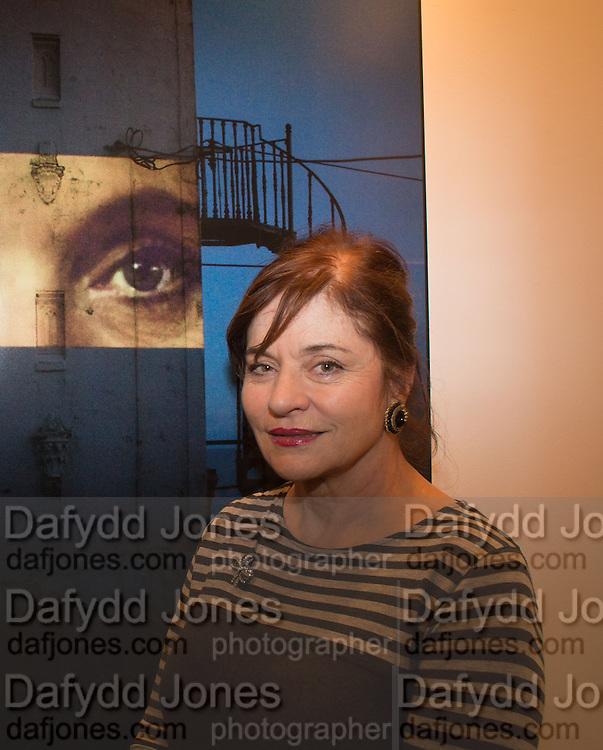 DIANA QUICK, Preview for the London Art Fair,  Islington Business Design Centre. London. 13 January 2014