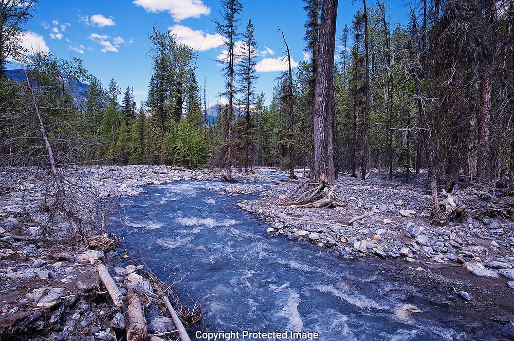 Hoodoo Creek., British Columbia, canada, Isobel Springett