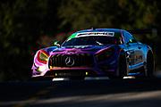 October 11-13, 2018: IMSA Weathertech Series, Petit Le Mans: 71 P1 Motorsports, Mercedes-AMG GT3, Loris Spinelli, JC Perez, Daniel Morad