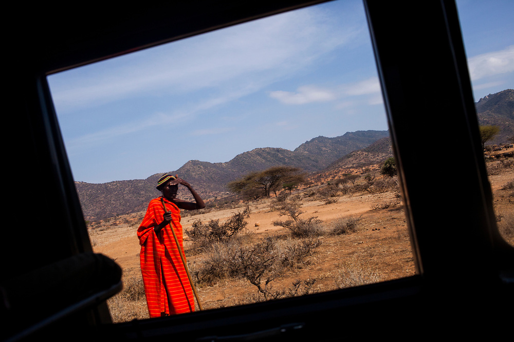 Through a jeep window in the bush of Kenya.
