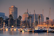 Sailiboats docked below city high rise office buildings in downtown at sunset, Long Beach Harbor, California