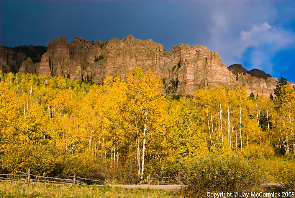 Stand of aspens on Owl Creek Road, backed by impressive wall with ganite chimneys.  Late Fall.