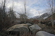 Mammoth During Fall or Early Winter