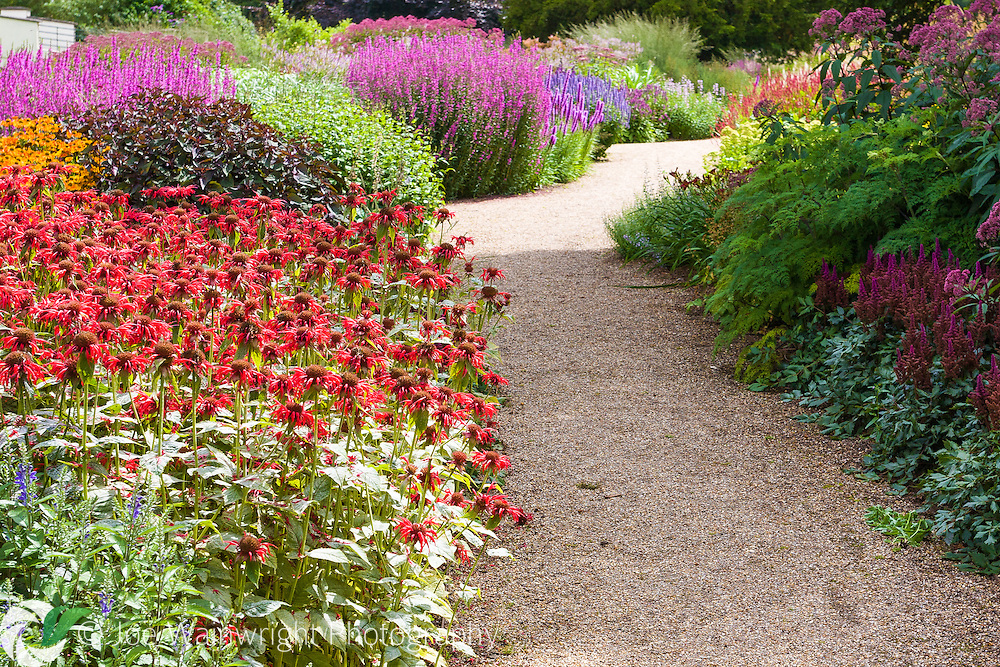 Rich planting, including monarda and astilbe, along a path at Trentham Gardens, Stoke-on-Trent, Staffordshire.