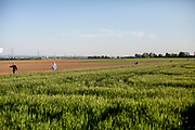 People are walking in the fields of Oberursel in times of social distancing because of the corona virus.