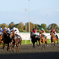 Kempton 13th September