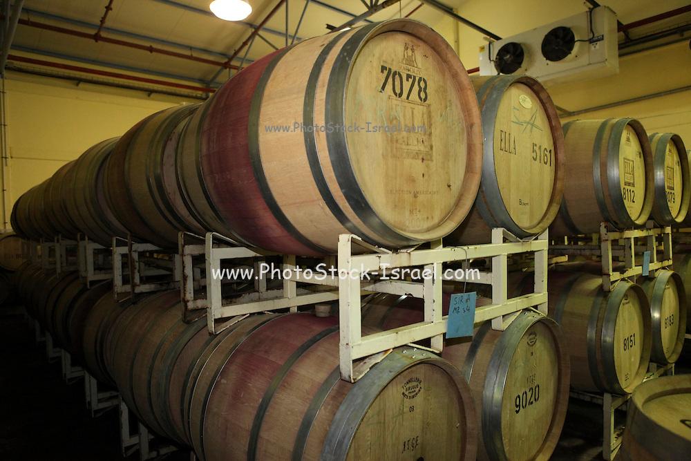 Israel, Ella Valley Winery. The Oak wood aging barrels