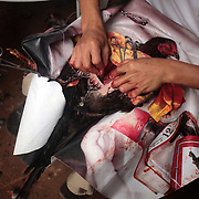 THE PHILIPPINES (Boracay). 2009. 'Cock doctors' clean and stitch up the wounded and injured winning birds who survive the fight to the death of two game cocks, each with three inch razor sharp blades fastened to their left ankles  at the Boracay Cockpit,  Boracay Island. Photo Tim Clayton <br /> <br /> Cockfighting, or Sabong as it is know in the Philippines is big business, a multi billion dollar industry, overshadowing Basketball as the number one sport in the country. It is estimated over 5 million Roosters will fight in the smalltime pits and full-blown arenas in a calendar year. TV stations are devoted to the sport where fights can be seen every night of the week while The Philippine economy benefits by more than $1 billion a year from breeding farms employment, selling feed and drugs and of course betting on the fights...As one of the worlds oldest spectator sports dating back 6000 years in Persia (now Iran) and first mentioned in fourth century Greek Texts. It is still practiced in many countries today, particularly in south and Central America and parts of Asia. Cockfighting is now illegal in the USA after Louisiana becoming the final state to outlaw cockfighting in August this year. This has led to an influx of American breeders into the Philippines with these breeders supplying most of the best fighting cocks, with prices for quality blood lines selling from PHP 8000 pesos (US $160) to as high as PHP 120,000 Pesos (US $2400)..
