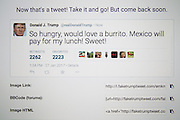 January 27, 2017 - <br /> <br /> Fake Donald Trump tweets from China<br /> <br />  Fake Donald Trump tweets are seen in a Twitter timeline on 27 Friday, 2017. In China a site that generates fake tweets that look as if they were generated by US president  used to mock the president.<br /> ©Exclusivepix Media