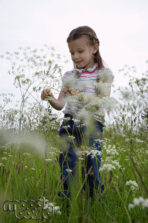 Girl (5-6) playing in meadow
