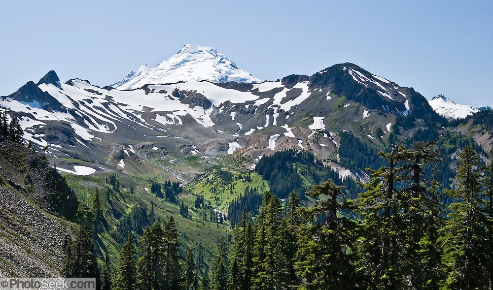 Mount Baker (10,781 feet), Mount Baker Wilderness, North Cascades mountains, Washington, USA