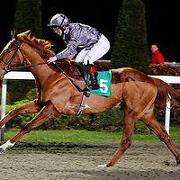 Gabrial's Bounty and Franny Norton winning 6.25 race