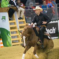 Reining 2nd Individual Qualifying Competition