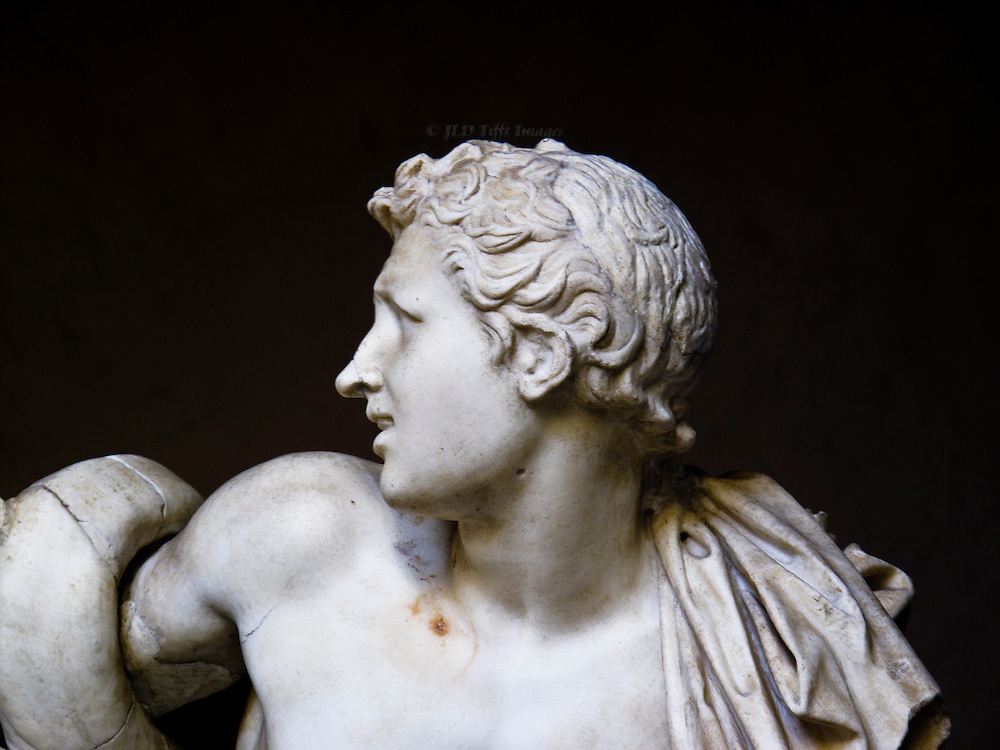 Laocoon sculpture, Vatican museum; detail of a head of a boy, one of Laocoon's sons, turned to the side and looking frightened as a snake curls over his upper arm.