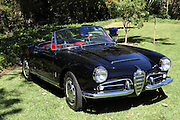 ARCADIA, CALIFORNIA, USA, SEPTEMBER 6, 2013. Spyders in the Garden car show at the Los Angeles Arboretum on September 6, 2013. The 1963 Alfa Romeo Giulia Spider with 1600cc engine had 104 HP.