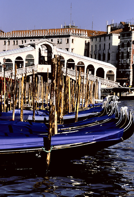 Formation of moored gondolas below Rialto bridge, Venice, Grand Canal; forest of wood mooring poles beyond the gondoli..
