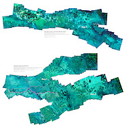 Transect images of Debris field