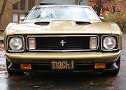 A nose on view of a beautiful, gold and black, 1973 Ford Mach 1 Mustang.