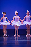 Wellington, NZ. 6.12.2015.  Sugar Flowers, from the Wellington Dance & Performing Arts Academy end of year stage-show 2015. Little Show, Sunday 10.15am. Photo credit: Stephen A'Court.  COPYRIGHT ©Stephen A'Court