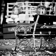 Black and White Image of an old bench with peeling paint, seated at the edge of the Grand Canal, in Dublin City