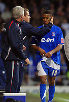 Photo: Ashley Pickering.<br />Ipswich Town v Sheffield Wednesday. Coca Cola Championship. 11/11/2006.<br />Ipswich's Danny Haynes is substituted very early in the first half