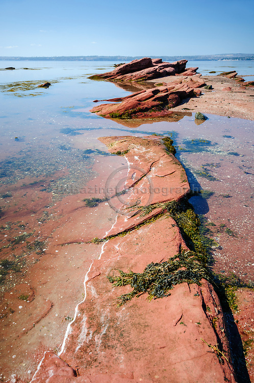 Formation of red rocks jut out from the shores of St-Andrews Pottery Cove, NB Canada