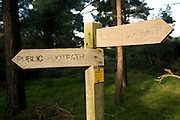 Wooden public footpath sign with direction arrows, Suffolk, England