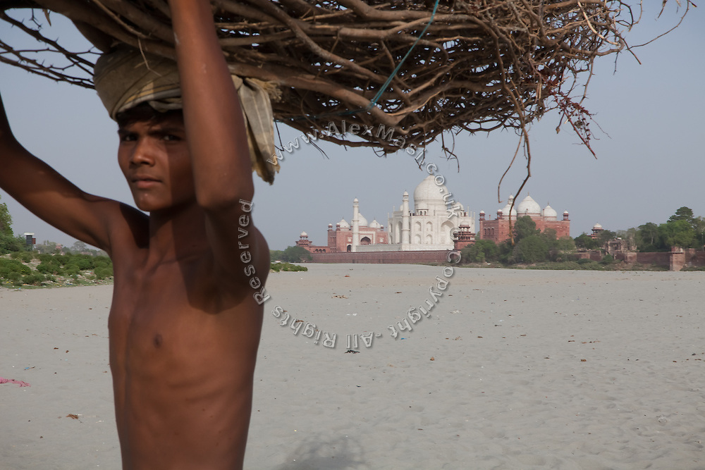 A boy is carrying firewood over the sands created by the low summer flow of the heavily polluted Yamuna River, across a view of the Taj Mahal, in Agra.