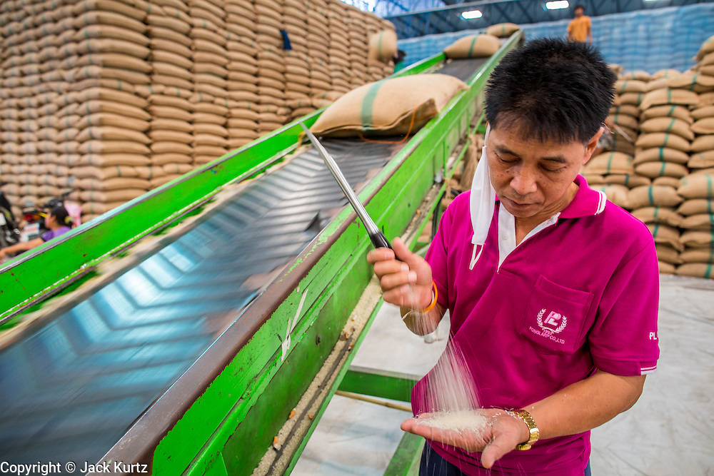"15 NOVEMBER 2012 - PATHUM THANI, PATHUM THANI, THAILAND: A worker in a rice warehouse in Pathum Thani checks the quality of rice being stored there. The rice was bought by the Thai government under the rice pricing program, called the ""pledging scheme."" The Thai government under Prime Minister Yingluck Shinawatra has launched an expansive price support ""scheme"" for rice farmers. The government is buying rice from farmers and warehousing it until world rice prices increase. Rice farmers, the backbone of rural Thailand, like the plan, but exporters do not because they are afraid Thailand is losing its position as the world's #1 rice exporter to Vietnam, which has significantly improved the quality and quantity of its rice. India is also exporting more and more of its rice. The stockpiling of rice is also leading to a shortage of suitable warehouse space. The Prime Minister and her government face a censure debate and possible no confidence vote later this month that could end the scheme or bring down the government.    PHOTO BY JACK KURTZ"