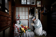 Namie, Fukushima prefecture, November 11 2013 - Takashi Ando, 60, former worker of Fukushima Daiichi nuclear power plant,  going back to his former house to clean up the dead rats. His wife passed away a few years before the accident. Mr Ando now lives in a temporary house in Soma. He spend one week after the accident alone in his house because temporary centers for refugees did not allow pets. He is now allowed to go back to his house but can not stay overnight.