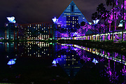Late Night Reflections of the Dolphin Hotel at Disney World, Lake Buena Vista Florida