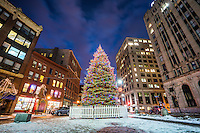 Beneath the towering buildings in the urban heart of Portland stands a Christmas Tree.